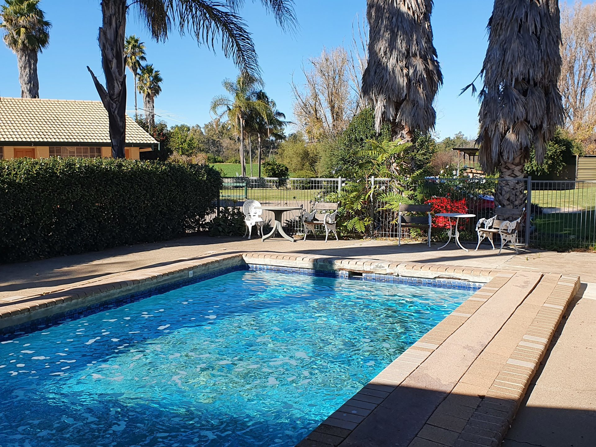 Tamworth accommodation images swimming pool at McNevins MotelM
